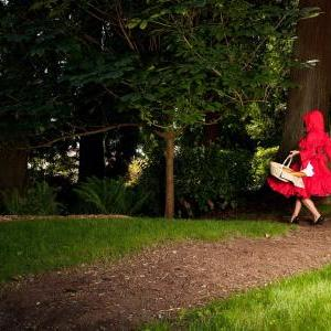 Little Red Riding Hood Halloween Co..